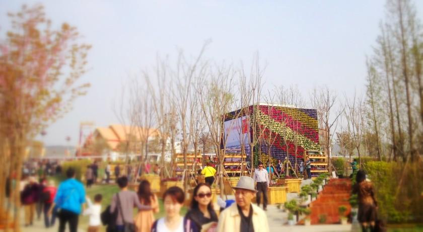 qindao14_ma-pavillon_9 (1)